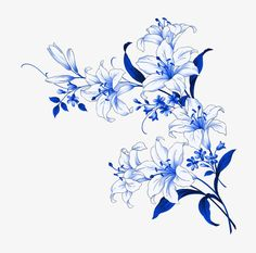 Flower Pattern Drawing, Flower Patterns, Pattern Flower, Drawing Flowers, Beautiful Flower Drawings, Beautiful Flowers, Flower Prints, Flower Art, Flower Vase Making