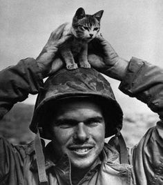 US Marine with lookout kitty
