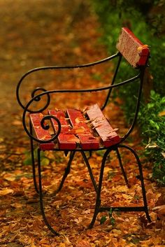 The autumn bench was wire and wood.  Four slats of wood for sitting.  One for resting your back.  The metal was thin and elegantly curled as if the maker had taken a day off from making sleighs to whip out this more modest work.  The orange leaves covered the ground and a few wet ones clung to the wooden seat.  I wanted to sit, but could not violate the beauty of the image by peeling the wet leaves away.  They belonged, more than I did, to the grace of that moment.  I went on. • James Skene