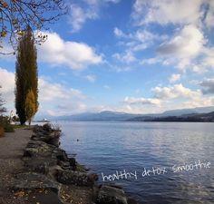 Lake of Zurich #swiss #zurich #lake #friends #photo #landscape #beautifull #instapic #balance #fitness #body #mindfulness #family #sun #enjoy  detox glten free healthy cleaneating