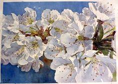 Cerisier en fleurs - 50,9 cm - 40 cm - VENDU - Expo 2011