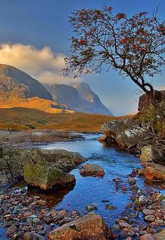 Glen Coe, Scotland  // Premium Canvas Prints & Posters // www.palaceprints.com // STORE NOW ONLINE!
