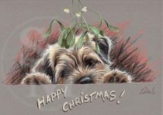 C443x Happy Christmas. Border Terrier Christmas cards pack of 10