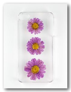 iPhone 4/4s case, Resin with Real  Flower, Purple Daisy ( 2 )