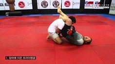 [몬스터짐 MMA 강좌] UFC168 로우지의 테이트 공략(2)-암바연속기, 태클방어