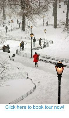 Central Park Winter Wonderland, NYC #nyc #tours #bus_tours
