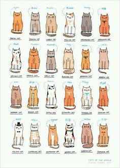 고양이 울음 소리는 어느 곳이건 크게 다르지 않을 텐데 나라마다 고양이 울음의 표현은 다양하다. 특히 한국이 독특한 듯