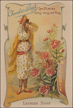 Delcampe – La plus grande marketplace pour les collectionneurs Scrapbook, Cards, Heaven, Painting, Vintage, Rose, Posters, Livres, Flowers