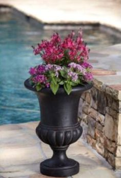 1000 Images About Urn Planters On Pinterest Urn 400 x 300