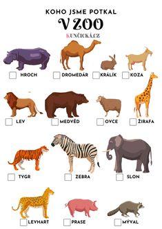 Zoo, Scooby Doo, Activities For Kids, Kindergarten, Montessori, Fictional Characters, Baby, Children Activities, Kindergartens