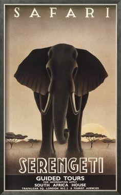 Serengeti Pôsteres por Steve Forney