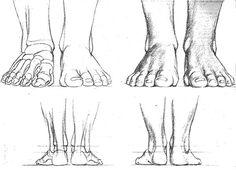 Représentation des pieds