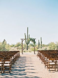 Gorgeous outdoor spring desert wedding at Desert Foothills in North Scottsdale with beautiful spring wedding flowers including blush roses and dahlias by Array Design, Phoenix, Arizona. Photography by Mary Claire. Wooden arch with flowers. Outdoor Wedding Decorations, Outdoor Wedding Venues, Indoor Wedding, Wedding Ceremony, Wedding Backdrops, Ceremony Backdrop, Ceremony Decorations, Wedding Gifts For Bride, Wedding Bridesmaids