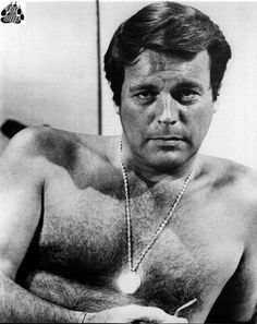 William Wagner (actor) Robert Wagner It Takes a
