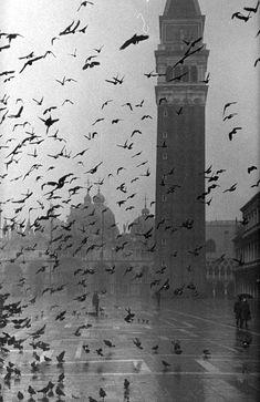 San Marcoplein, Venetië, Italië