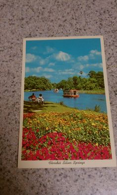 Vintage ephemera postcard that has not been used. Features Floridas Silver Springs. No stains. A llittle vintage yellowing. No tears. Very good