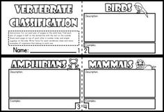 Use this cute, little mini-book to describe and give examples of each of the five main classes of vertebrates. With this 8-page mini-book, students have a hands-on printable to to use as an information organizer on the five main classes of vertebrates or for you to use as an assessment. Great addition to a science notebook or lapbook or for sub plans. In Spanish, also.