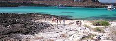 Visit the Galapagos Islands and see huge turtles.