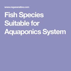 Fish Species Suitable for Aquaponics System