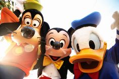 I got Mickey and Friends! Which Disney Squad Do You Belong To? | Quiz
