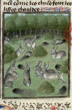 Medieval Books, Medieval Life, Medieval Manuscript, Medieval Art, Renaissance Art, Illuminated Manuscript, Lapin Art, Rabbit Run, Year Of The Rabbit