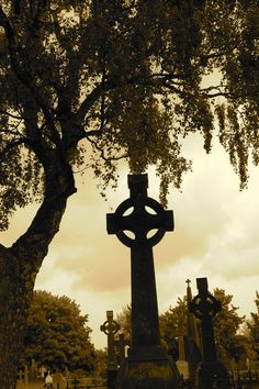 Old cemetery in Ireland