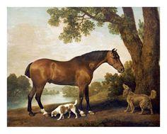 George Stubbs - A Bay Hunter, a Springer Spaniel and a Sussex Spaniel, 1782 - Art Print
