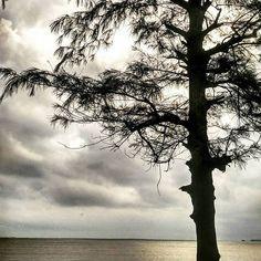 Source: @reuben_77 #GoaInTheRains #goamonsoons #goamonsoon #goarain #goarains . . Nothing like sunset on a rainy day! #bliss #wednesday #clouds #epic #nature #picoftheday #instago #lategram #beach