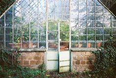 Greenhouse, potting shed