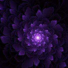 Fractal Art by Killy Thirsk