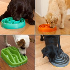 Slo-Bowl is a dog bowl that lets your pet graze all day—it's like an eating obstacle course!