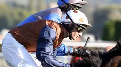 Streets paved with Gold for Cook - Horse Racing - Erupt Sports