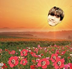 Enjoy the sunshine ARMYS XD