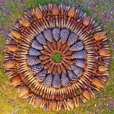 Nature Art Display | Amazing Eco Art Inspiring Unique Yard Decorations that Connect People ...