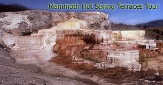 Step-like deposits of limestone rock are covered with bright algae and bacteria at Mammoth Hot Springs in Yellowstone.
