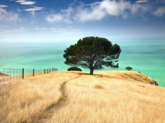 Decanter Bay, Canterbury, New Zealand