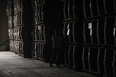 Barriles de ron procesado y madurado de acuerdo a una antigua receta,   almacenados bajo tierra en la Hacienda Santa Teresa, en El Consejo, Estado Aragua (60 km al oeste  de Caracas), el 8 de abril de 2011. Venezuela produce más de 32 millones de litros de ron al año,  de los cuales el 40% es para consumo doméstico, mientras que el resto es exportado, mayormente a España e Italia. (Foto de Juan Barreto para AFP, Getty Images)