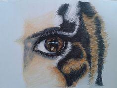 Hybrid sketching human/tiger - fine line pen, colour pencil.