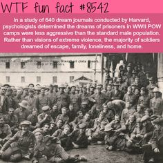 What prisoners of war dream of - WTF fun facts