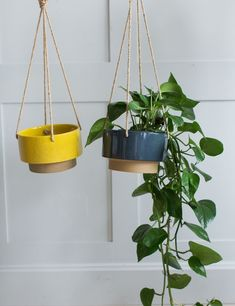Hanging Two-Tone Plant Pot - Three Colours Available at Rose & Grey Hanging Plants, Potted Plants, Fairy Glow Jars, Vodka Gifts, Cork Sheet, Citrus Vodka, How To Make Coasters, Pottery Designs, Unique Furniture