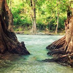 Come and enjoy #EcoTourism in #Guatemala at #RioAzul #Peten