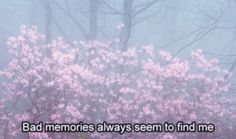Bad memories always seem to find me Poetry Quotes, Sad Quotes, Movie Quotes, Inspirational Quotes, The Quiet Ones, Still Frame, Mood And Tone, Bad Memories, Sad Life