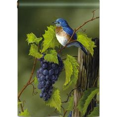 Vineyard Bluebird Garden Flag