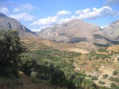 Building plot of 10.000 sq.m in Gianniou, Rethymno, Crete, Greece