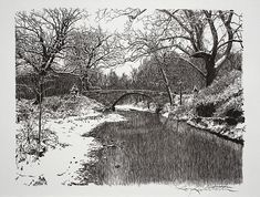 The artist has done a fine rendering of a landscape, as they are very difficult to do in pen and ink. Tangled tree limbs and dark water.