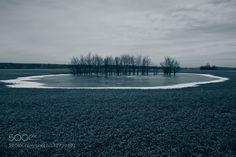In field. - Pinned by Mak Khalaf In the frozen pond. Landscapes cloudscoldcooldayfieldicelandscapepondskytreeukrainewinter by andriysolovyov