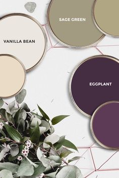 What paint colors are the best fit for Sage Green, Vanilla Bean and Eggplant? So… What paint colors are the best fit for Sage Green, Vanilla Bean and Eggplant? Some ideas…. Green Color Schemes, Paint Color Schemes, Green Colour Palette, Bedroom Color Schemes, Paint Color Palettes, Sage Green Bedroom, Sage Green Walls, Aubergine Bedroom, Sage Green Paint