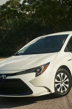 Toyota Gli 2020 In Pakistan Concept, Price - As you begin your seek for new automobile opinions, chances are you'll find yourself counting on professional Toyota Corolla, Corolla 2018, Corolla Sport, Most Popular Cars, Latest Cars, Modified Cars, Sports Art, Super Cars, Honda
