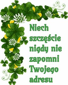 Z okazji 💚💚💚 Weekend Humor, Beautiful Roses, Writer, Thoughts, Funny, Happy, Quotes, Blog, Hosta Flower