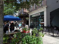 Axum Coffee Spring Fever, Winter Garden, Bloom, Street View, Coffee, Kaffee, Cup Of Coffee, Terraced Garden